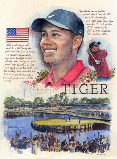 Tiger Woods by Chris Duke