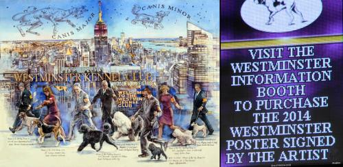 2014 Westminster Dog Show - Chris Duke