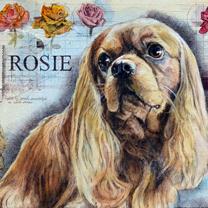 Rosie by Chris Duke